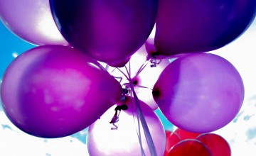 purple-and-red-balloons-234196